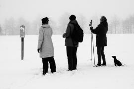 Drei Wanderer und ein Hund im Schnee - Verschneite Landschaften | © Andreas Schniertshauer | Fotoclub 2000 Aachen