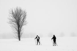 Langläufer - Verschneite Landschaften | © Andreas Schniertshauer | Fotoclub 2000 Aachen