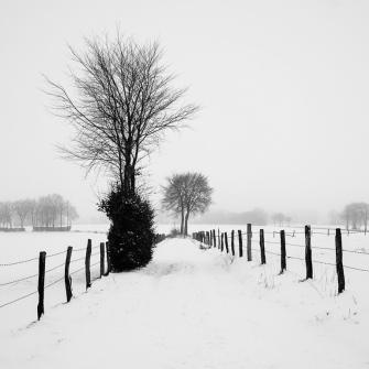 Auf einem schneebedecktem Feldweg - Verschneite Landschaften | © Andreas Schniertshauer | Fotoclub 2000 Aachen